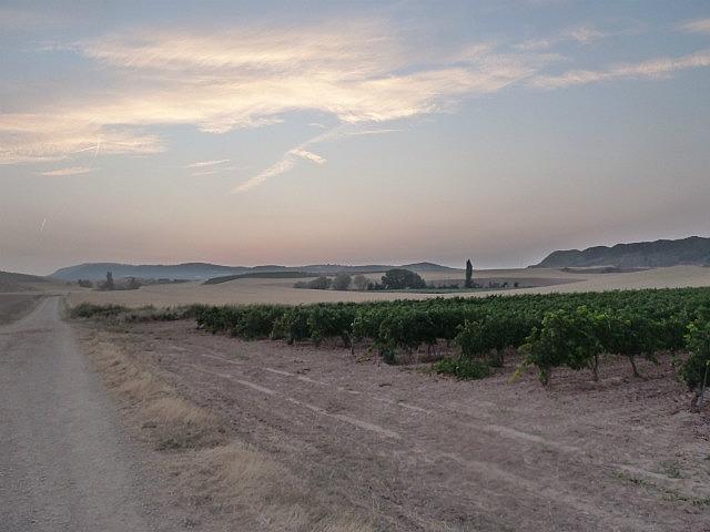 Sunrise on path to Los Arcos