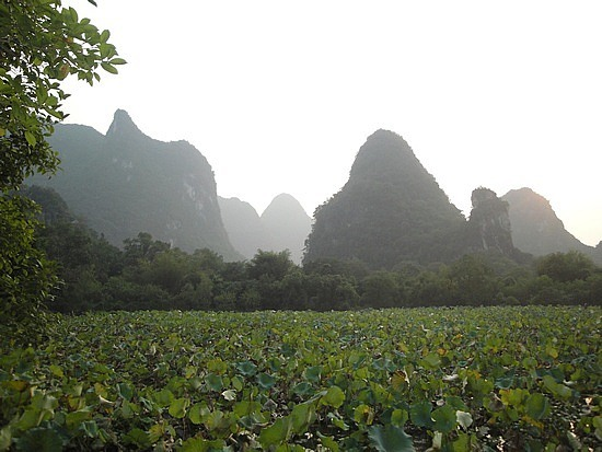 View from park in Yangshuo