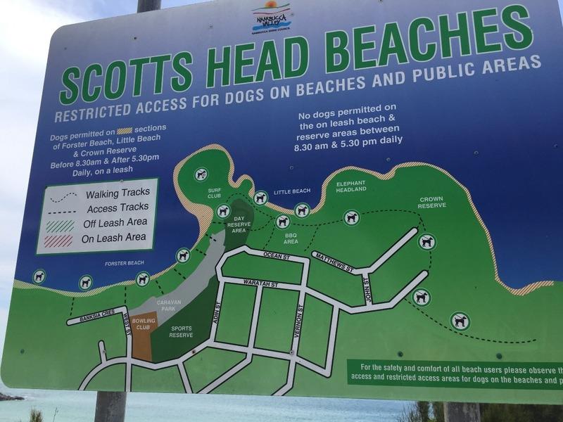 Scott Head Beaches