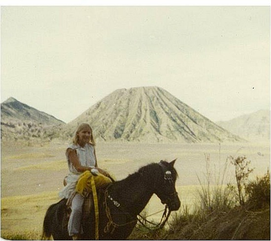Horse ride back from Mt Bromo