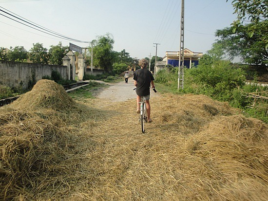 Lots of straw on road