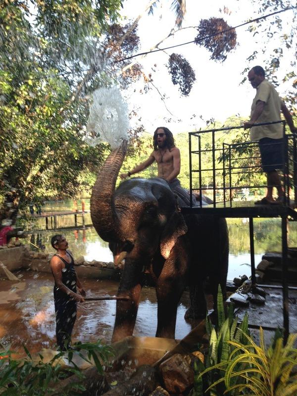 Mitch elephant shower