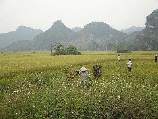 Around Ninh Binh