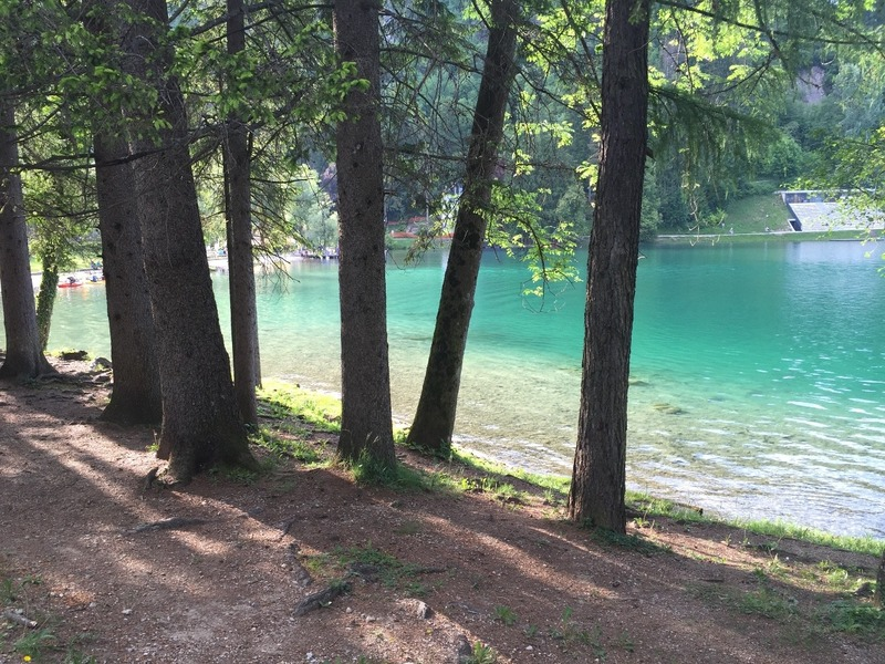 Incredible clear green water - can see the fish