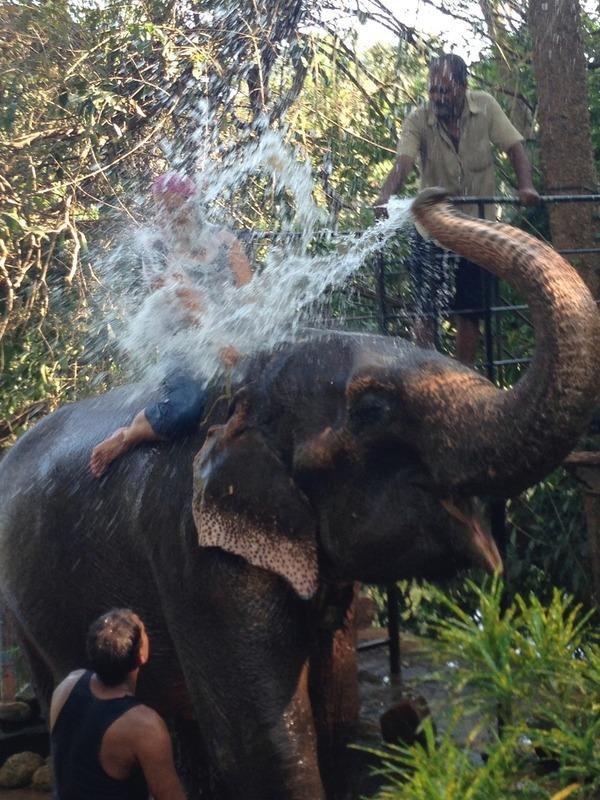 Kerryn elephant shower