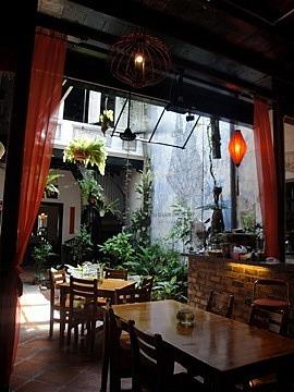 Baboon Cafe