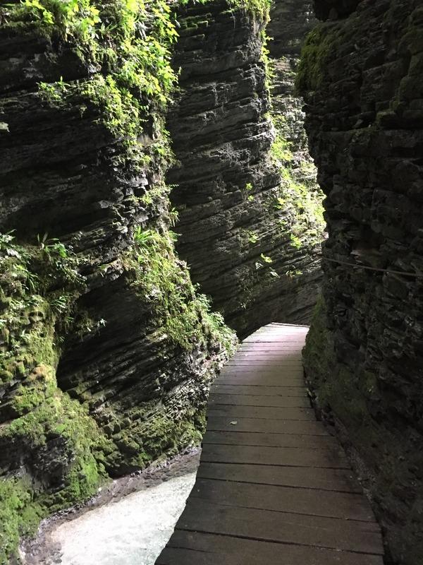 Boardwalk into magical gorge