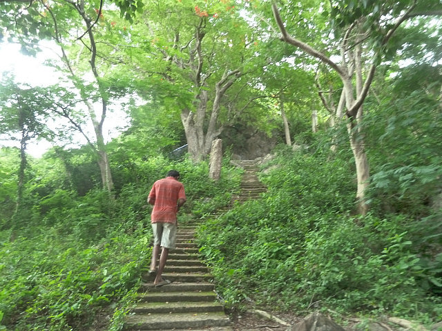 Steps to more caves