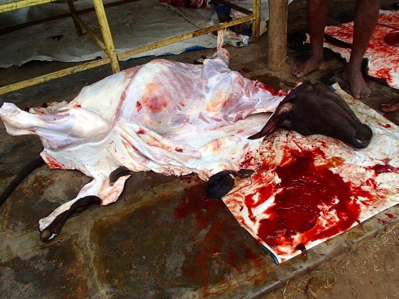 The butchering