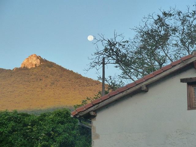 Moon still out