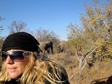 Leigh & one of the bull elephants