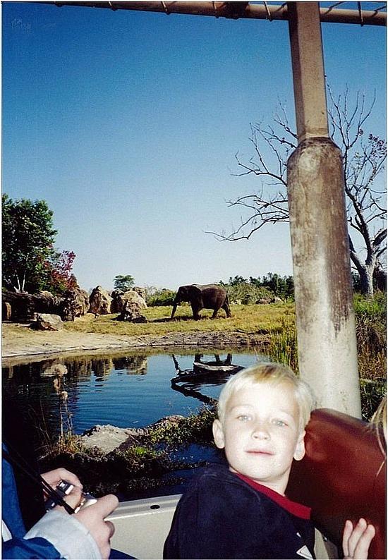 Safari on Animal Kingdom