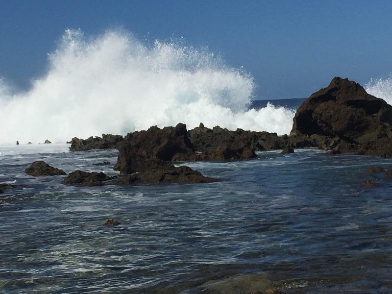 High impact waves at Shark Cove