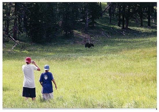 Adam & Nick way too close to a bear