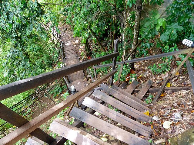 Steep descent on Monkey Trail
