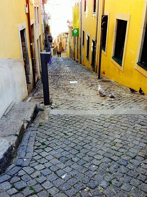 Cobblestoned lanes