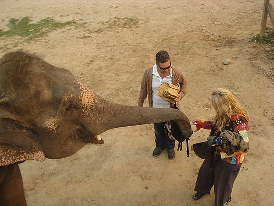 Leigh patting the elephant