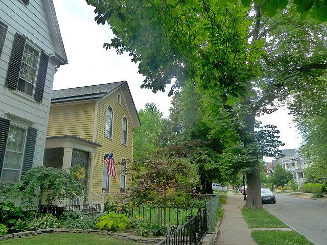 Loved Pearl Street