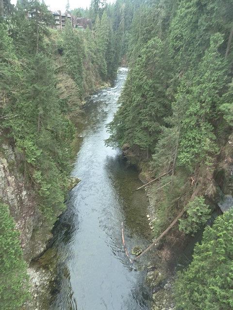 Capilano River below