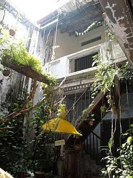 Courtyard of Baboon Cafe