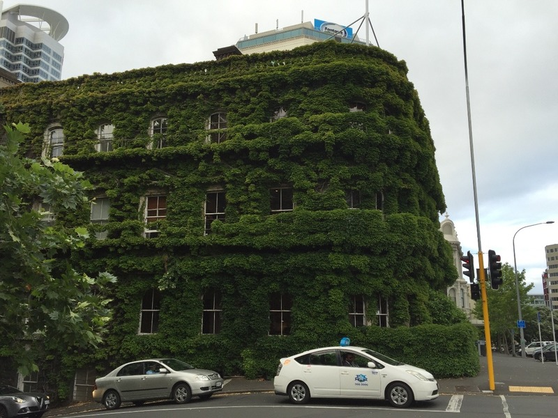 Vine covered building - The Northern Club