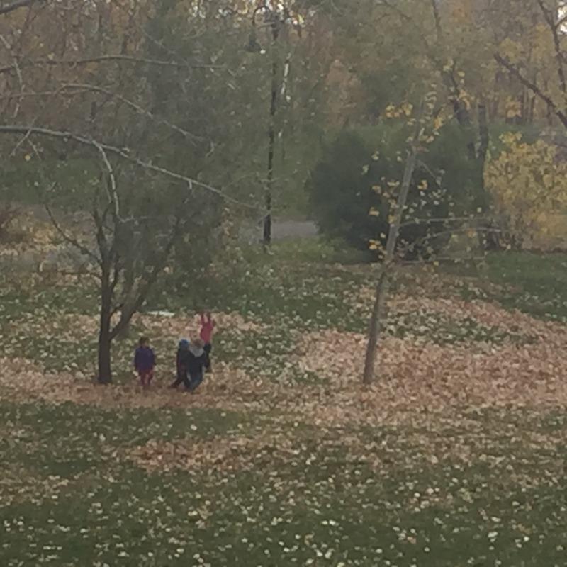 Having fun in the fall leaves