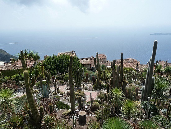 Cactus Garden view from Eze