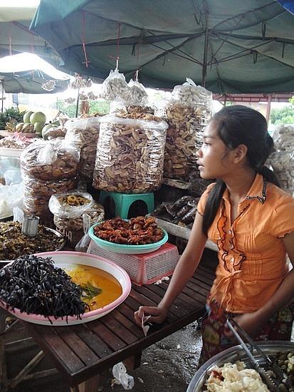 Buying Animal snacks