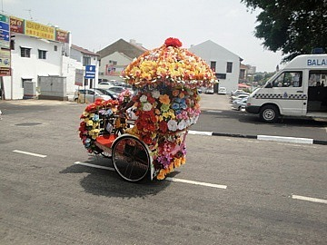 Under those flowers is a trishaw bicycle