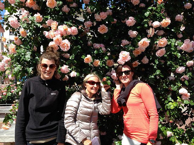 Logrono rose garden