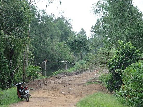 Muddy road where wheels full of mud
