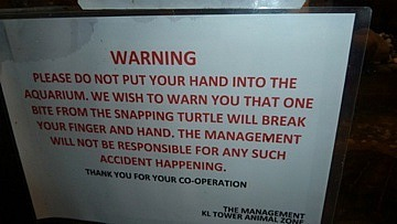 Warning about snapping turtles