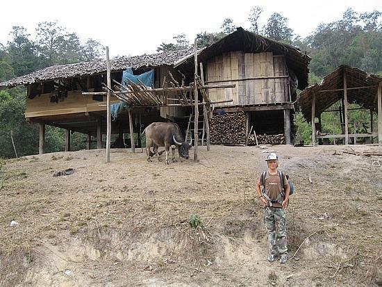 Passing village homes