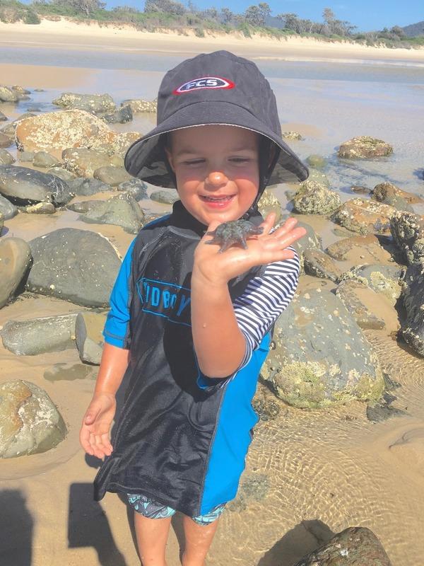 Ezra 4 found a star fish