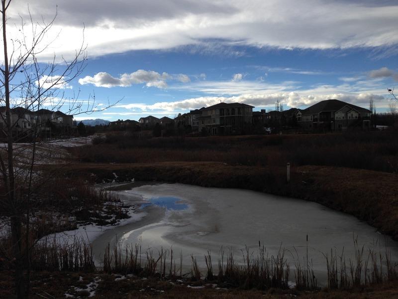 Pond near Rick and Debbie's