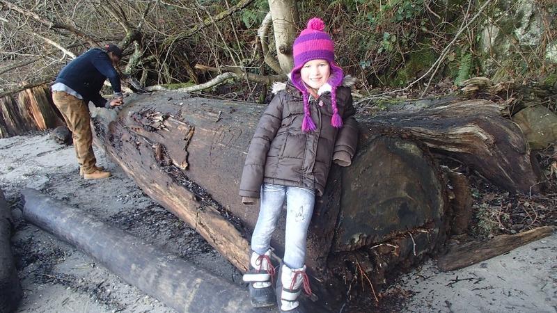 Alaiya  by huge fallen tree