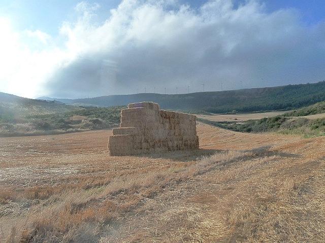 Haystack in a wheat field