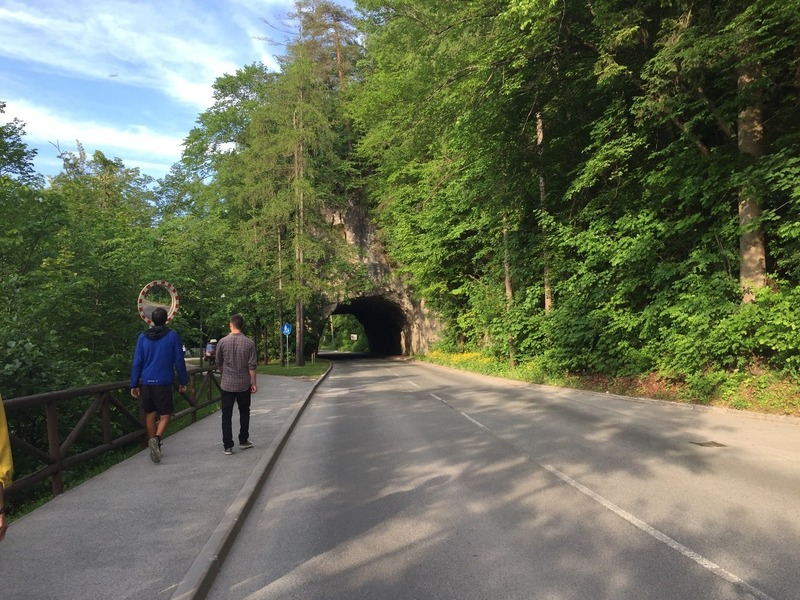 Tunnel in rock for the road