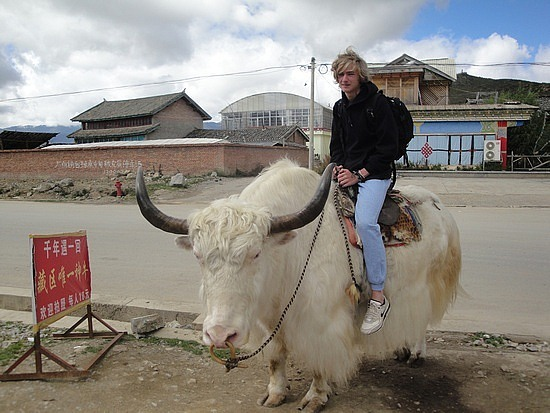Nath on a yak