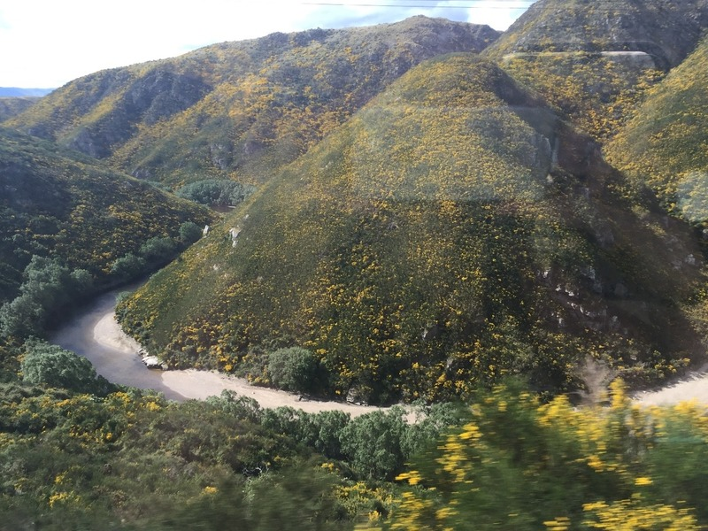 Views of the stunning gorge from the train
