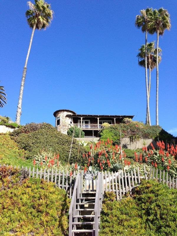 Cool beach houses