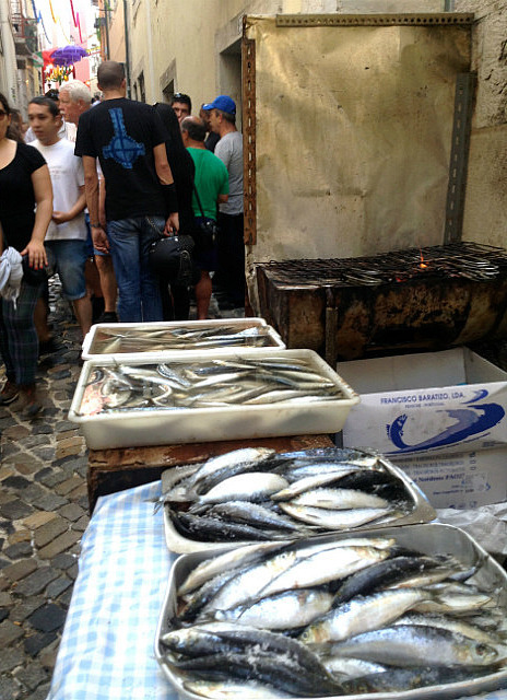 So many sardines