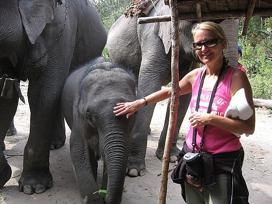 Patting an elephant - they are prickly & rough