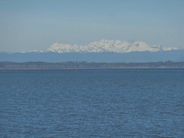 Looking south to Mt Ranier