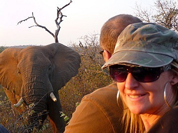 Elephant so very close!!!