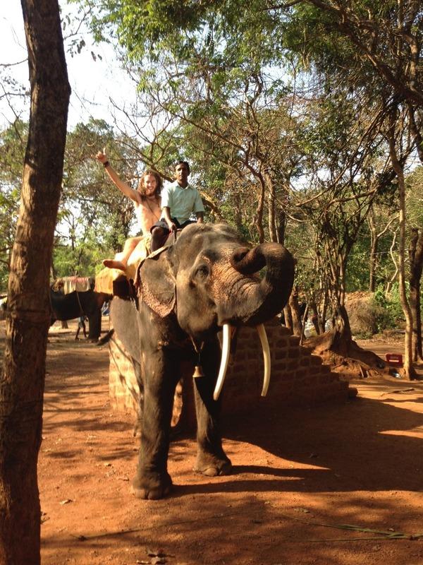 Mitch on elephant ride