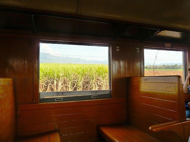 Psasing Sugar Cane fields