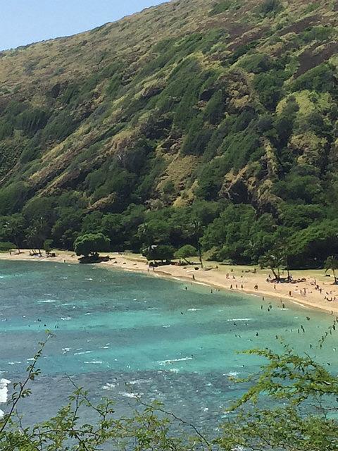 Snorkelling paradise