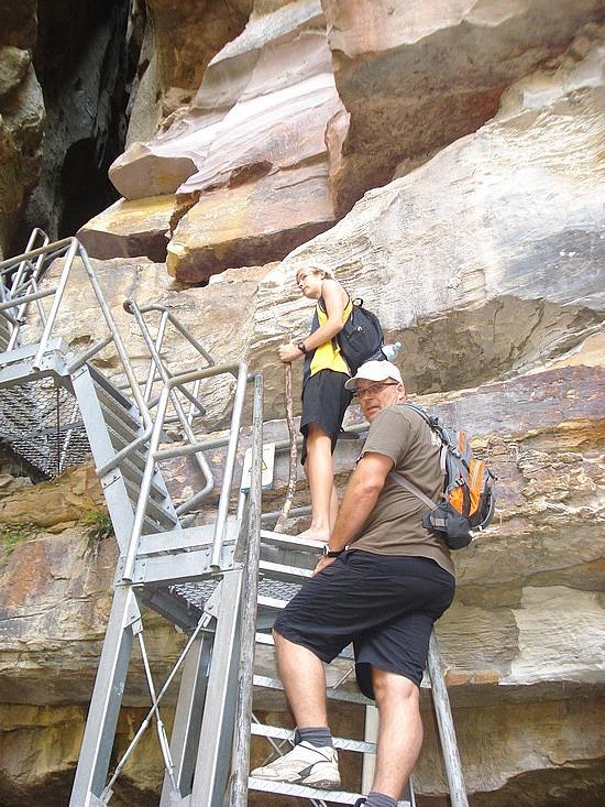 The boys climbing the ladder