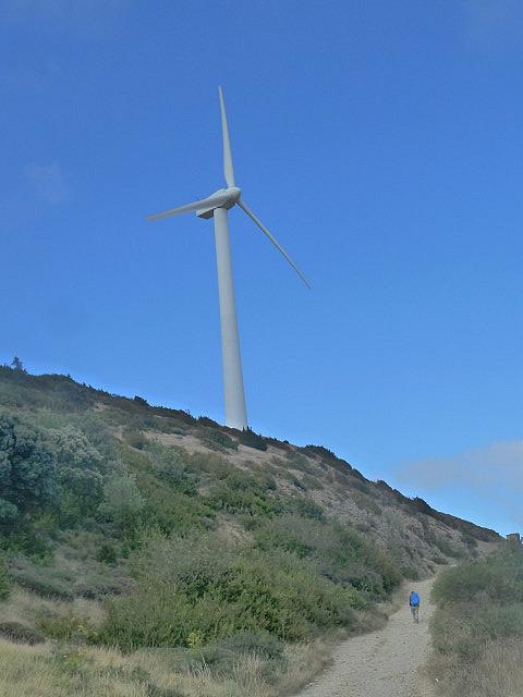 Massive wind towers